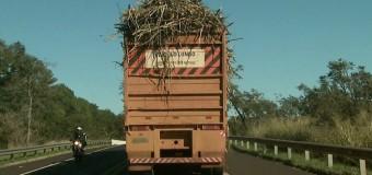 Transporte de cana-de-açúcar sem lona gera 22 multas na região de Ribeirão Preto