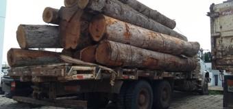 Caminhão com 13 toras de madeira é apreendido na zona rural de Vilhena