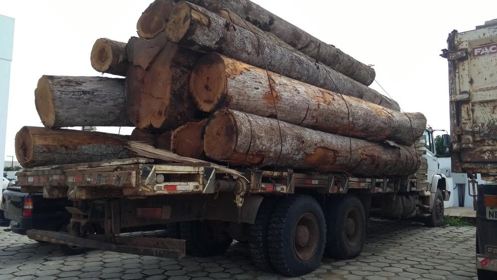 Caminhão transportava 23 metros cúbicos de madeira (Foto: Eliete Marques/G1)