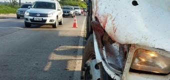 Motorista é decapitado em acidente entre caminhões na BR-101