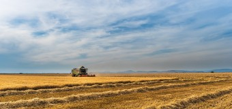 Com aumento do diesel, caminhoneiros do Paraguai preparam greve para aumentar o preço do frete da soja
