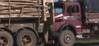 Queimada provoca acidente com três caminhões em rodovia, diz polícia
