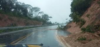 Trechos bloqueados em rodovias federais de Alagoas são liberados, diz PRF