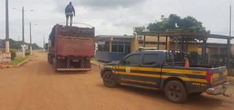 PRF flagra caminhoneiros transportando madeira sem documentação na BR-010