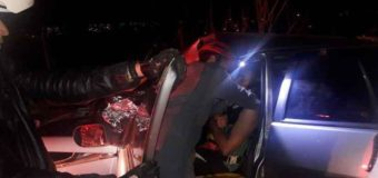 Cavalo causa engavetamento com quatro veículos em rodovia mineira