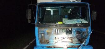 Caminhão atropela bovino que é lançado contra carro na BR-386