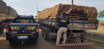 Projeto evita apreensão de veículo que transportar madeira extraída de forma ilegal