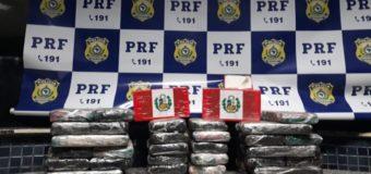 Cão da PRF encontra cocaína escondida em caminhão cegonheira