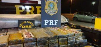 PF e PRF apreendem quase 500 quilos de cocaína na Grande Curitiba