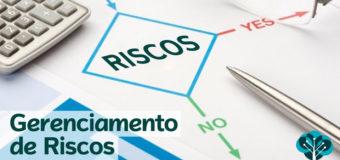 O gerenciamento de risco e a contratação de seguro*